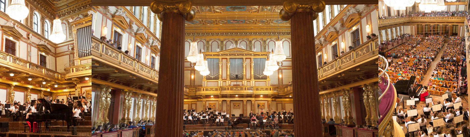 FEURICH Mod. 218 - Concert I, Wiener Musikverein