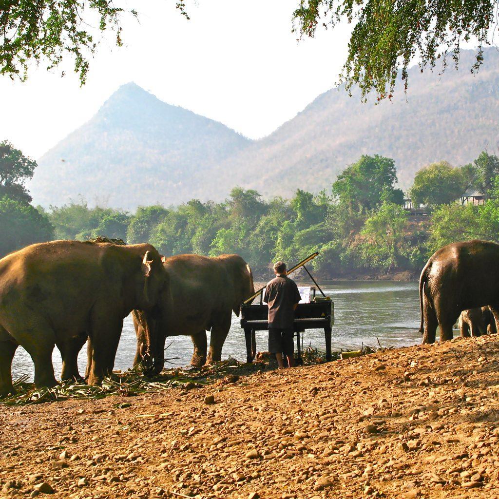FEURICH, Paul Barton & Elephants (7)