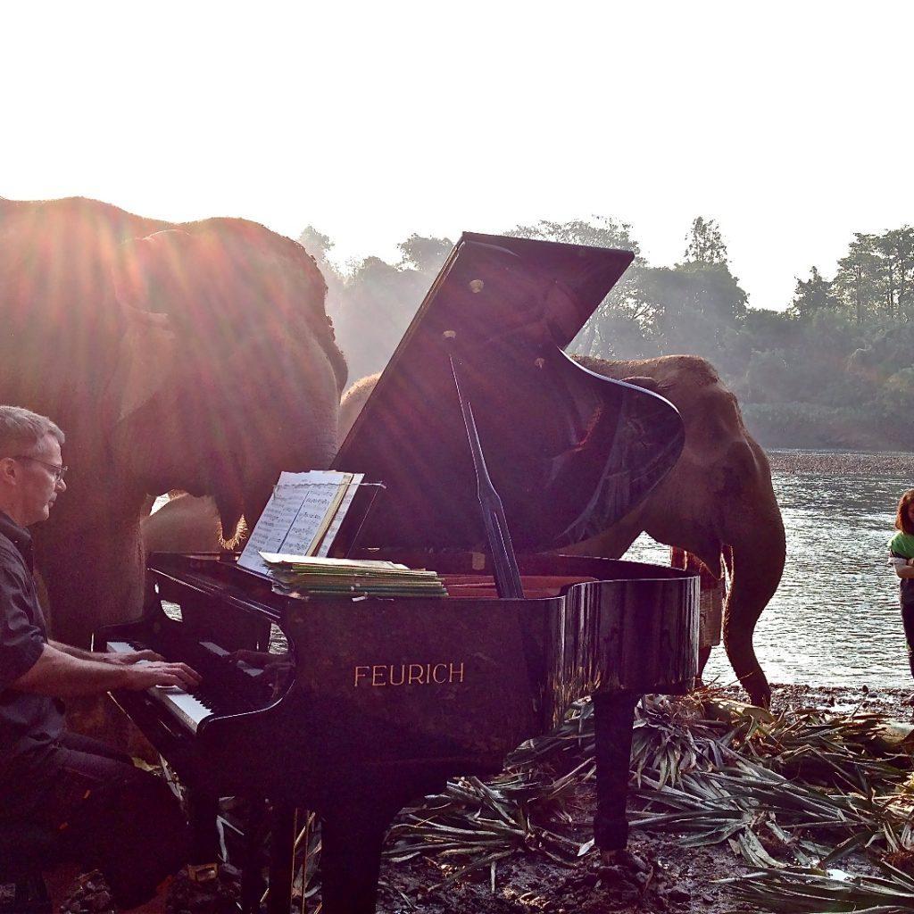 FEURICH, Paul Barton & Elephants (8))