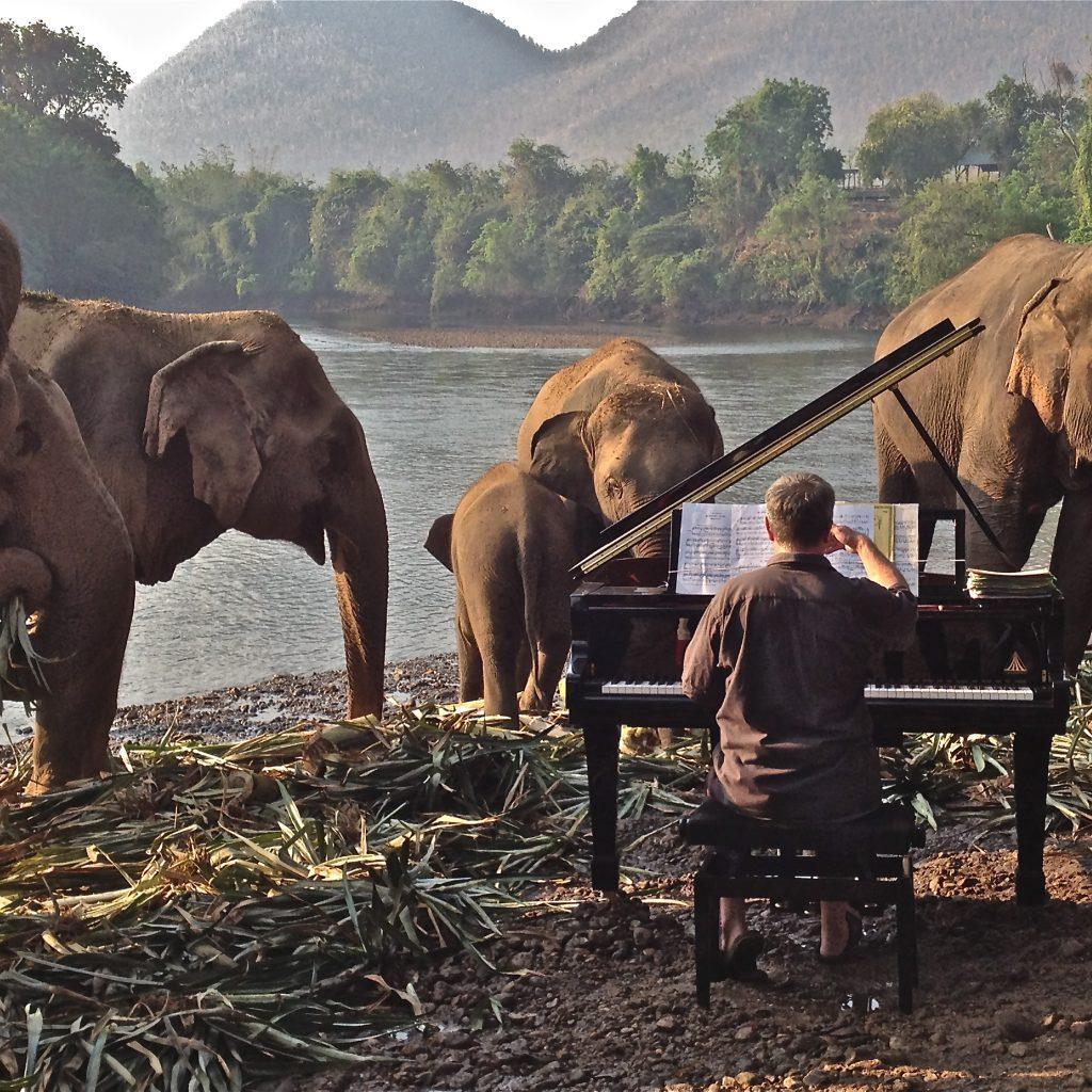 FEURICH, Paul Barton & Elephants (1)