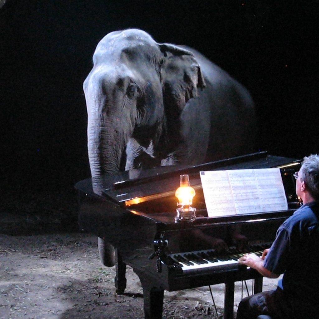 FEURICH, Paul Barton & Elephants (3)