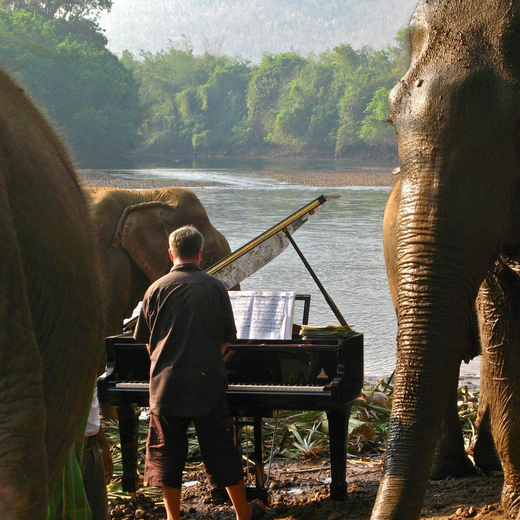 FEURICH, Paul Barton & Elephants (5)