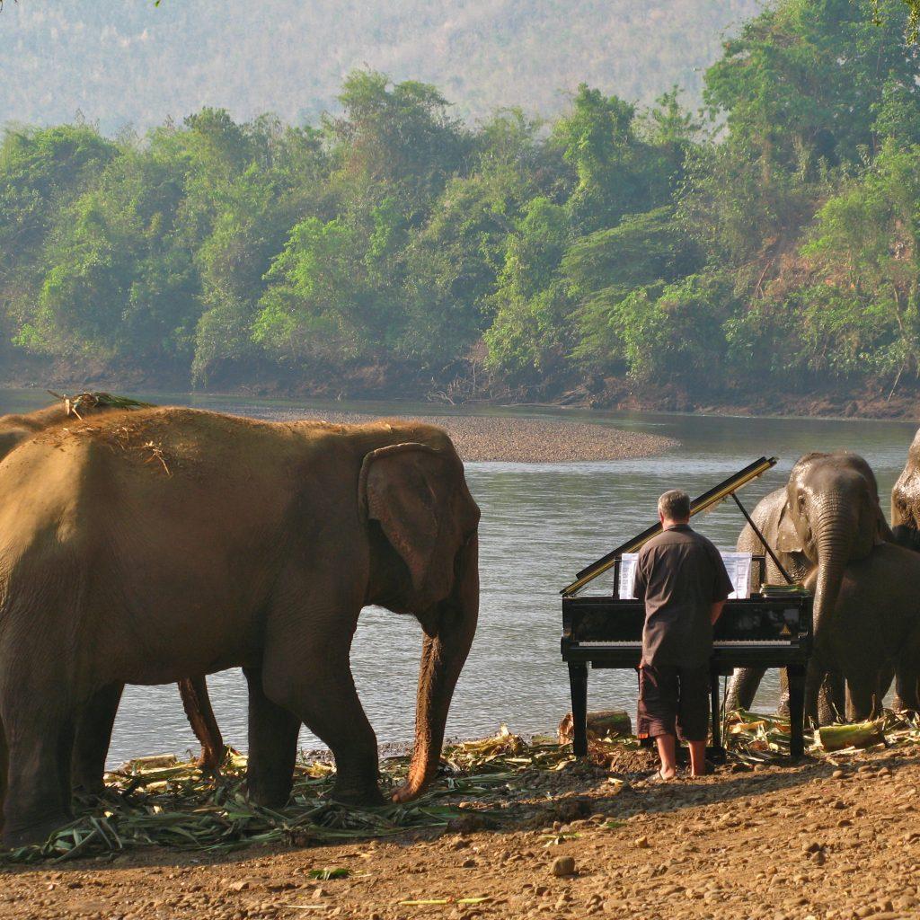 FEURICH, Paul Barton & Elephants (6)